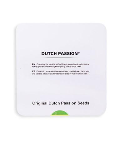 Семена сорта Passion #1 fem