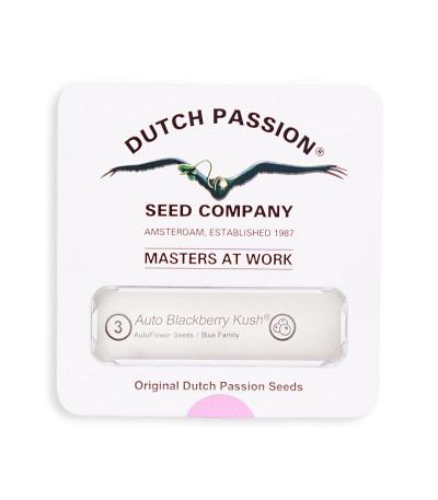 Семена марихуаны Auto Blackberry Kush в оригинальной упаковке