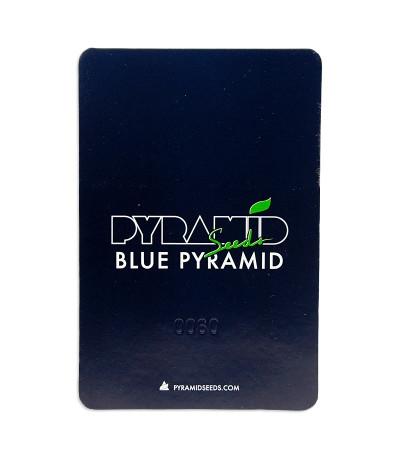 Семена сорта Blue Pyramid fem (Pyramid Seeds)