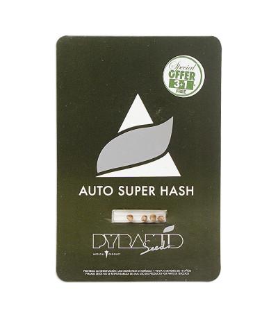 Семена сорта Auto Super Hash fem (Pyramid Seeds)