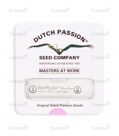 Семена сорта StarRyder auto fem (Dutch Passion)
