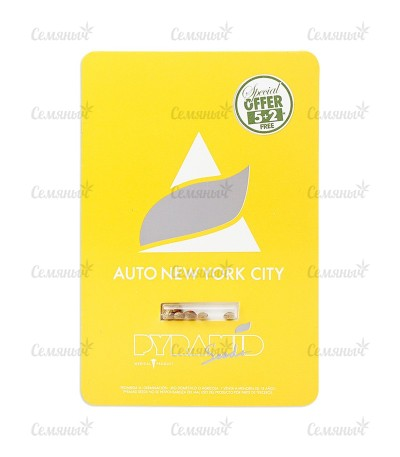 Семена сорта Auto New York City (Pyramid Seeds)